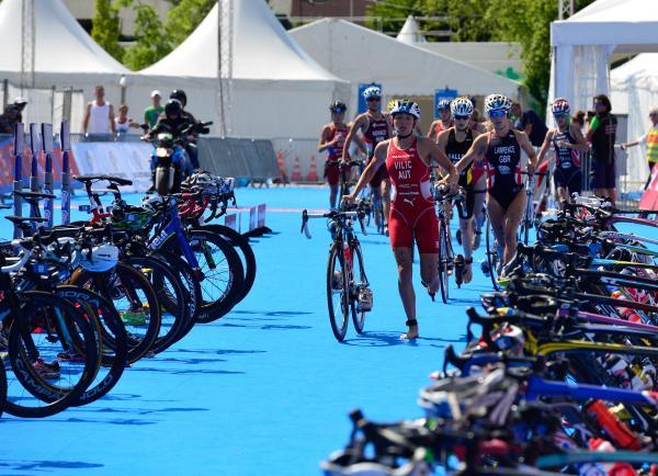 Olympiasieger steigen in World Triathlon Serie ein 4