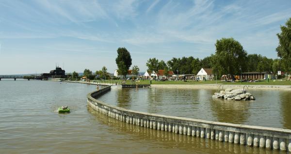 Gewinner der Schwimmfestival Neusiedlersee Startplätze stehen fest 1