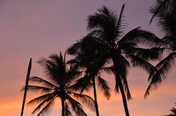 Neue Qualifikationsregeln für die IRONMAN Weltmeisterschaften auf Hawaii? 1