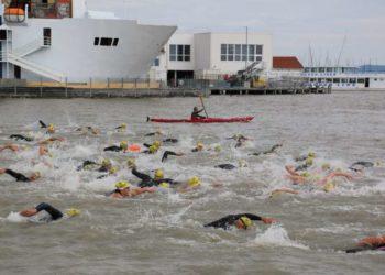 Swim & Fun in der Seearena Mörbisch mit großem Starterfeld 1