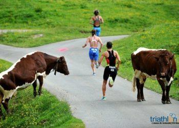 2015 kein Triathlon Bewerb in Kitzbühel 10