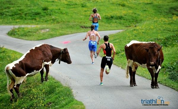 2015 kein Triathlon Bewerb in Kitzbühel 1