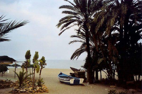 IRONMAN präsentiert neuen Wettkampf in Marbella 1