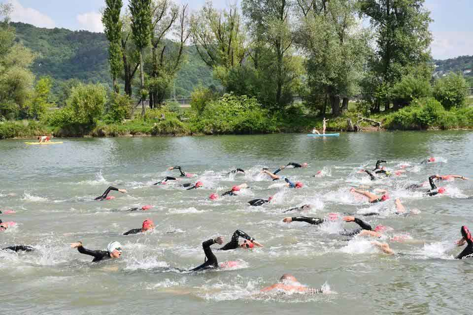 Teilnehmerrekord bei Neufelder See Open Water Swim 1